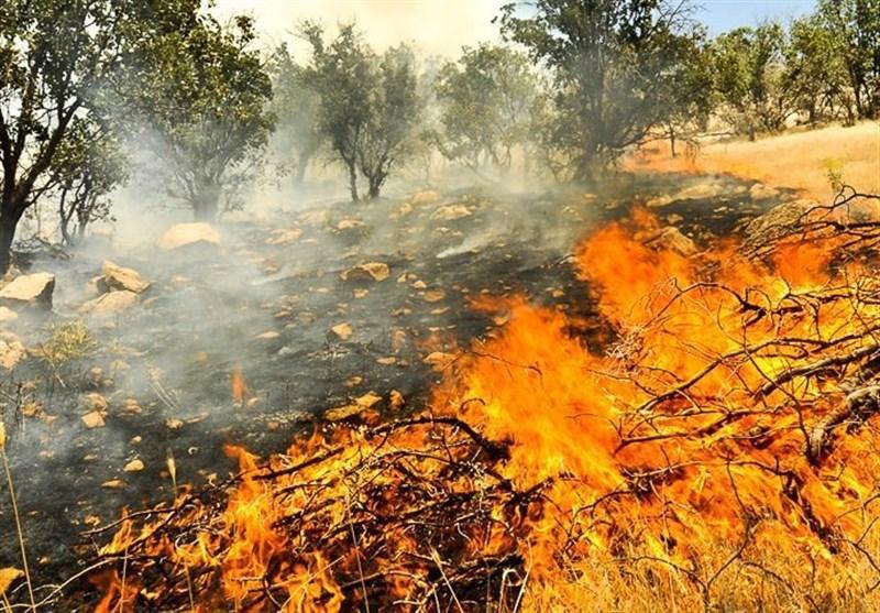 گسترش آتش سوزی جنگل های زاگرس به مناطق آزاد