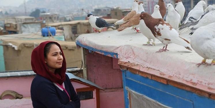 حوا، مریم، عایشه؛ داستان بی کسی زنان افغان