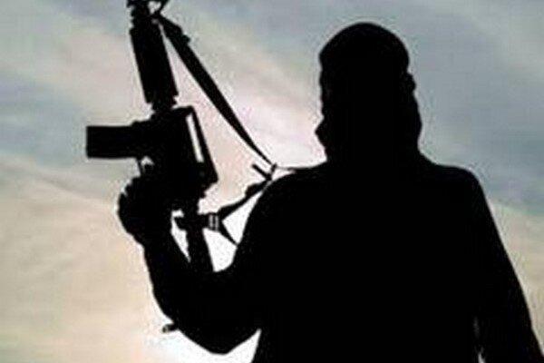 یورش تروریستها به جنوب نیجر، 28 تن کشته و 800 خانه طعمه حریق شد