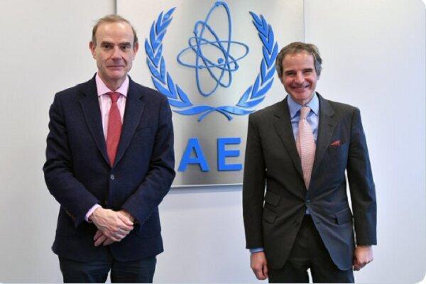 رافائل گروسی با رییس هیأت اروپایی نشست وین ملاقات کرد