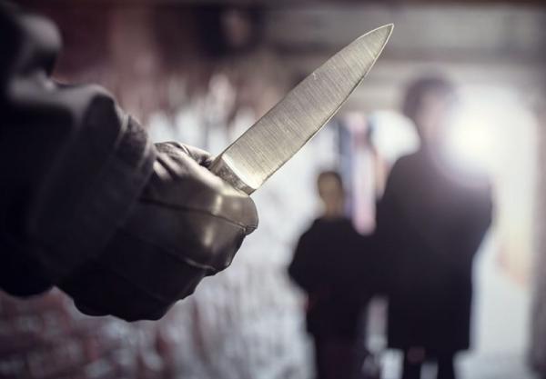 حمله با سلاح سرد به پلیس فرانسه